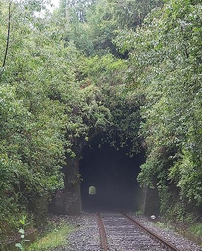 Túnel Los Venados 2020 boca norte