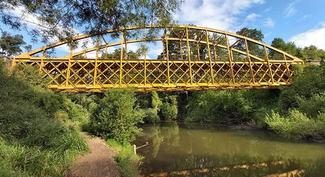 Puente Collilelfu 2020