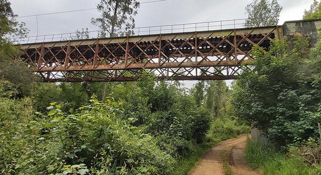 Puente Cuinco 2020